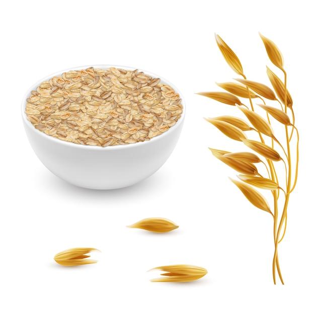 Orelhas de aveia realista 3d, grãos com tigela branca. planta detalhada de cereais Vetor grátis