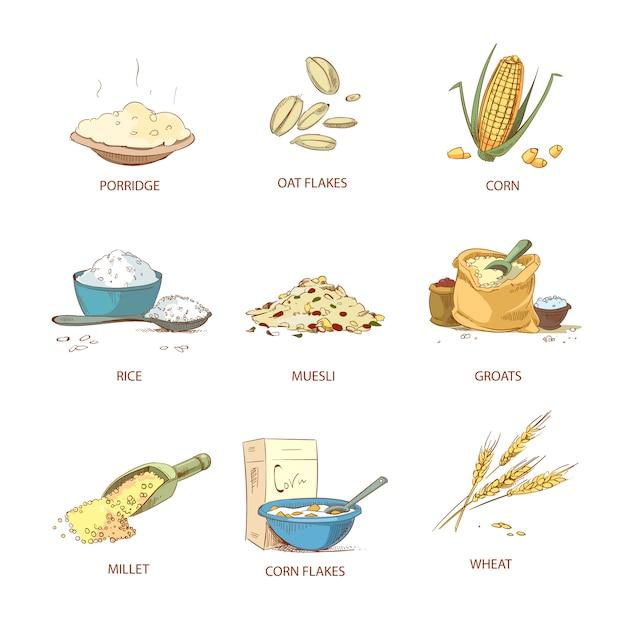 Orelhas maduras dos desenhos animados de cereais Vetor Premium