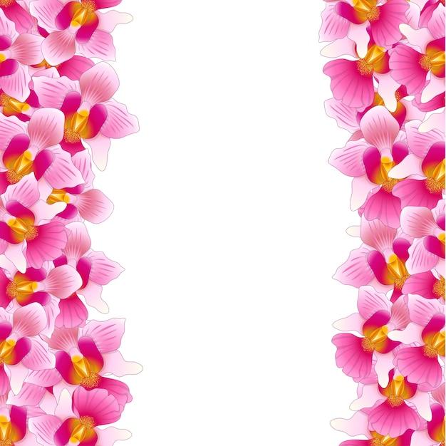 Orquídea rosada vanda miss joaquim Vetor Premium