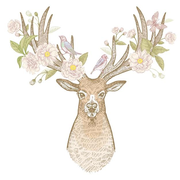 Os cervos dirigem com ilustração do vintage dos chifres da florescência. Vetor Premium