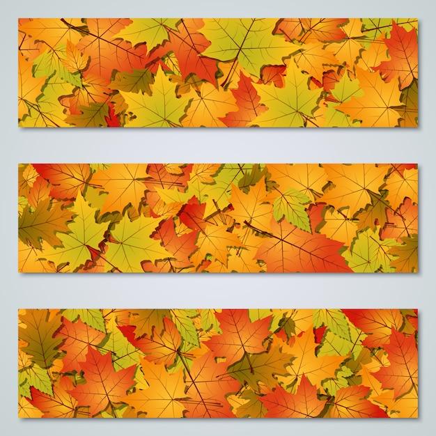 Outono colorido deixa coleção de fundo vector horizontal Vetor Premium