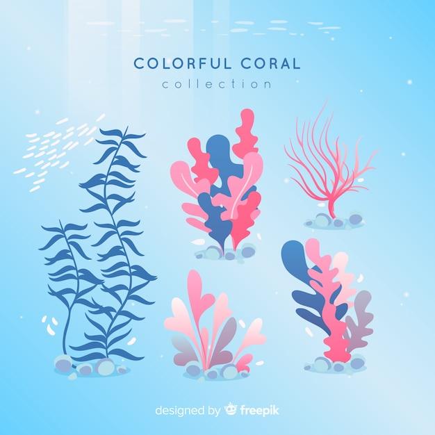 Pacote coral colorido de mão desenhada Vetor grátis