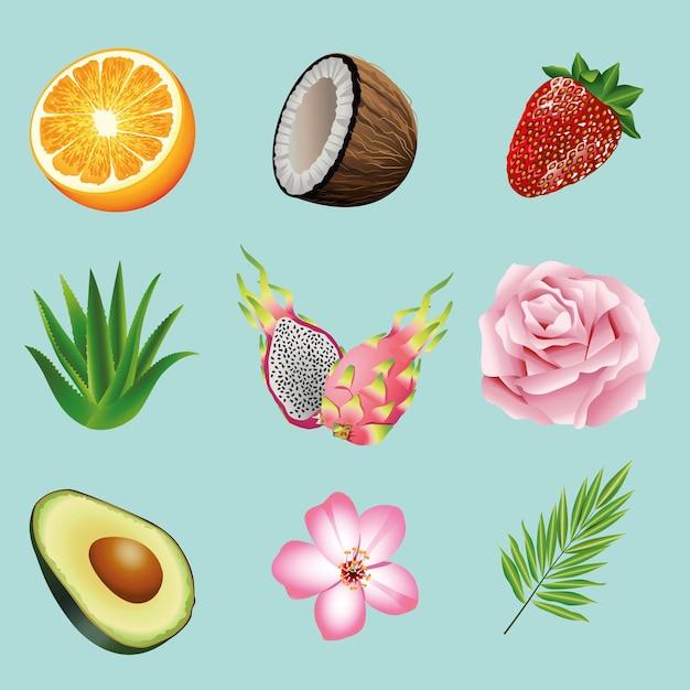 Pacote de nove frutas tropicais e plantas com ícones na ilustração de fundo azul Vetor Premium