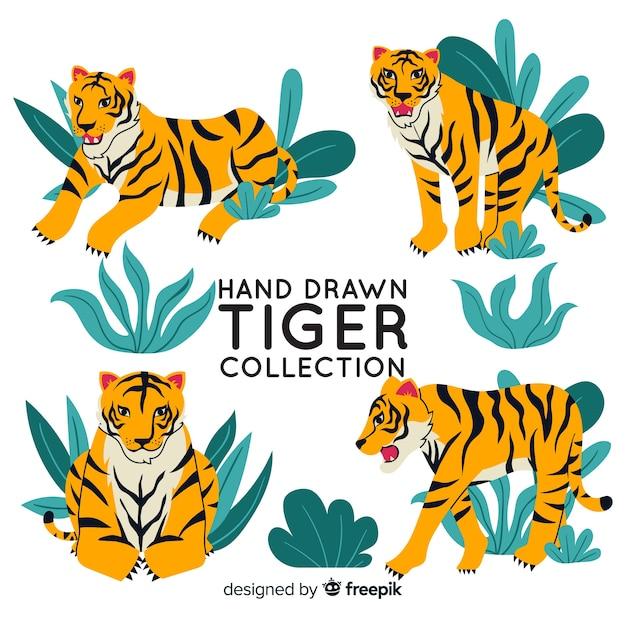 Pacote de tigres de mão desenhada Vetor grátis