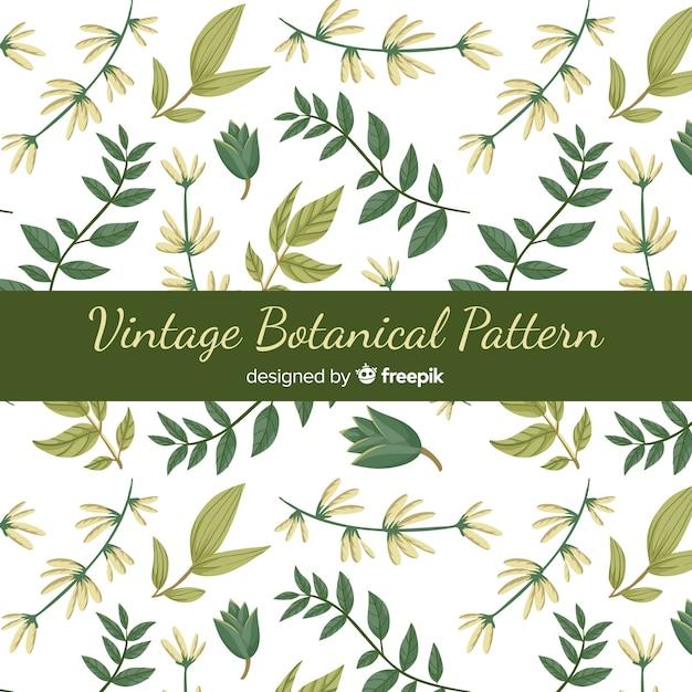 Padrão botânico vintage Vetor grátis