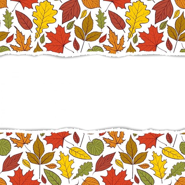 Padrão com folhas de outono Vetor Premium