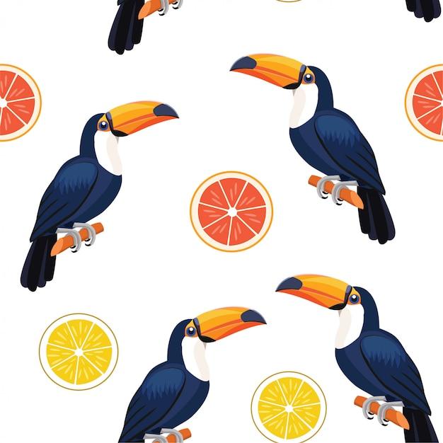 Padrão com tucano e frutas cítricas. Vetor Premium