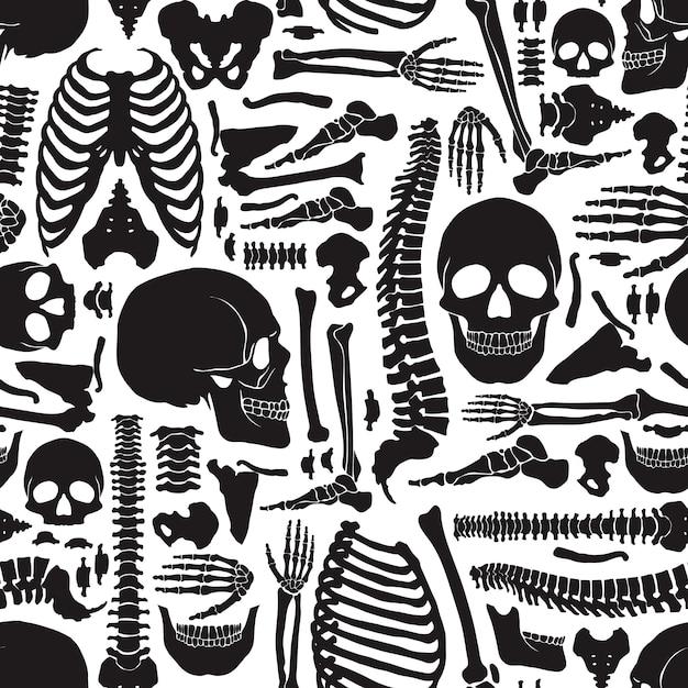Padrão de esqueleto de ossos humanos Vetor grátis
