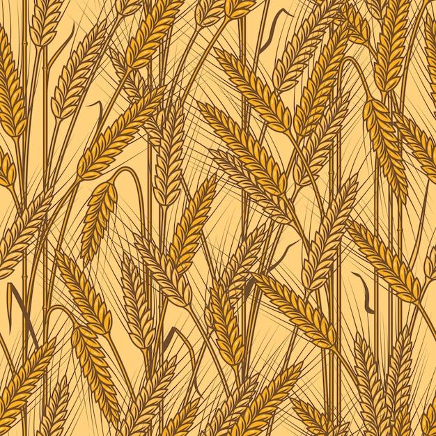 Padrão de orelhas de cereais sem costura Vetor Premium