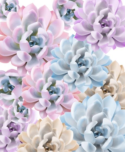Padrão de planta suculenta em aquarela Vetor Premium