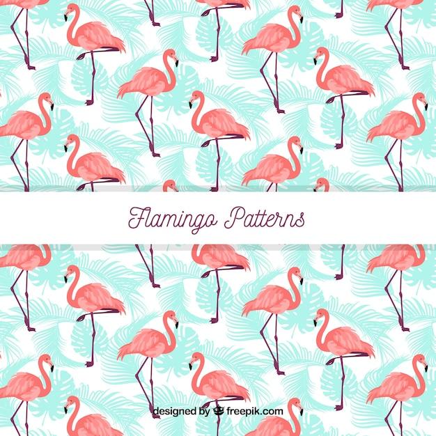 Padrão de verão flamenco Vetor grátis