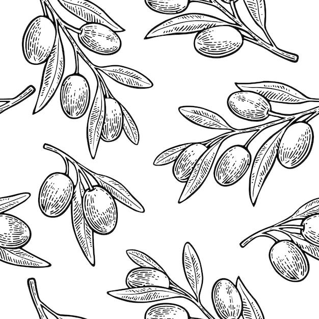 Padrão sem emenda azeitonas no galho com folhas. Vetor Premium