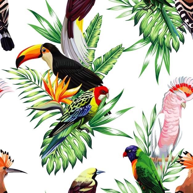 Padrão sem emenda com arara papagaio e tucano no ramo Vetor Premium