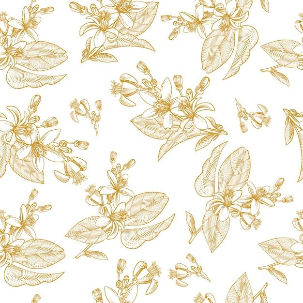 Padrão sem emenda com folhas de frutas cítricas, galhos e flores desabrochando em estilo de gravura Vetor grátis