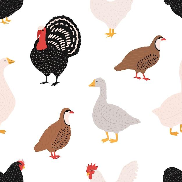 Padrão sem emenda com pássaros domésticos ou aves domésticas - galo, frango, ganso, pato, codorna, turquia Vetor Premium