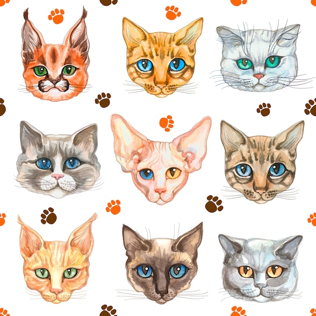 Padrão sem emenda com rostos de gatos de diferentes raças de gatos Vetor Premium