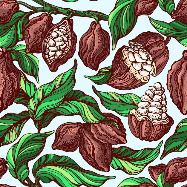 Padrão sem emenda de cacau. ramo botânico desenhado à mão, feijão, fruta tropical, folha verde Vetor Premium