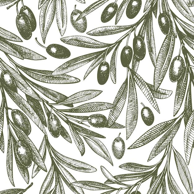 Padrão sem emenda de ramo de oliveira Vetor Premium