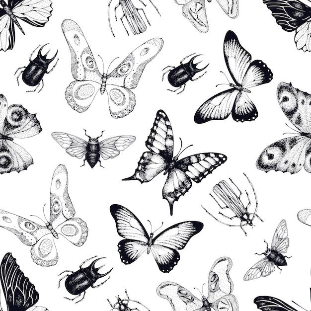 Padrão sem emenda de vetor com insetos e borboletas. fundo entomológico. mão desenhada ilustração vintage. Vetor Premium