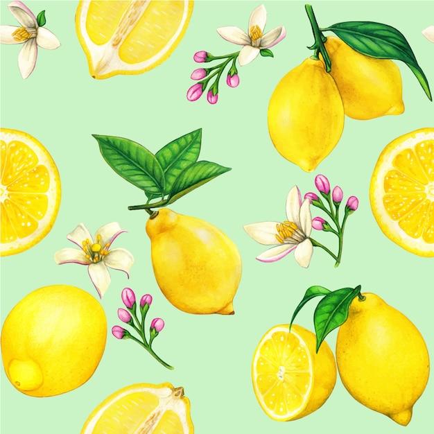 Padrão sem emenda em aquarela de limão de alta qualidade com frutas e flores Vetor Premium