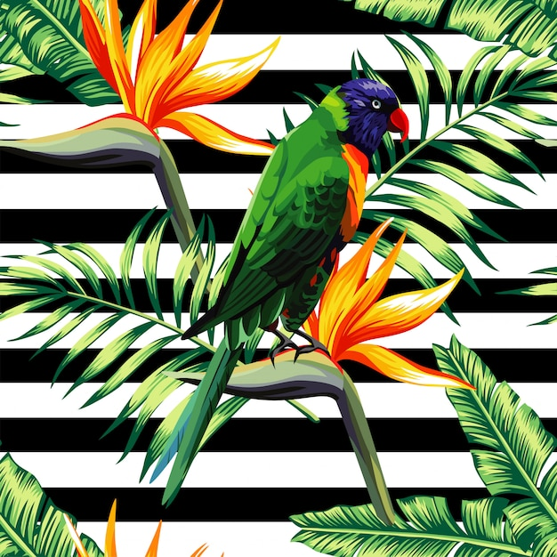 Padrão sem emenda floral exótico de papagaios Vetor Premium
