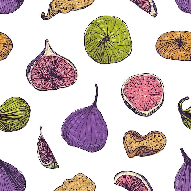 Padrão sem emenda natural com deliciosos figos frescos e secos Vetor Premium