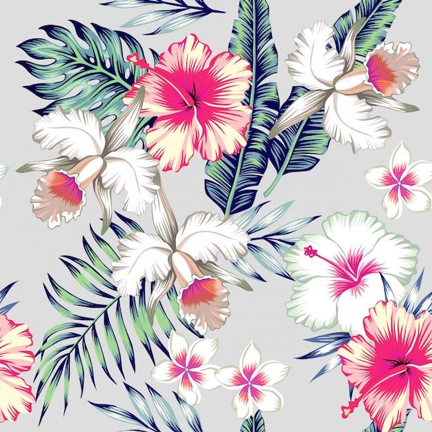 Padrão sem emenda tropical de hibisco e orquídeas Vetor Premium