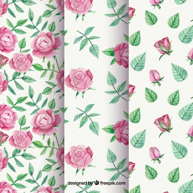 Padrões, jogo, rosas, vindima, aguarela, folhas Vetor grátis