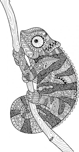 Página para colorir lagarto camaleão Vetor Premium