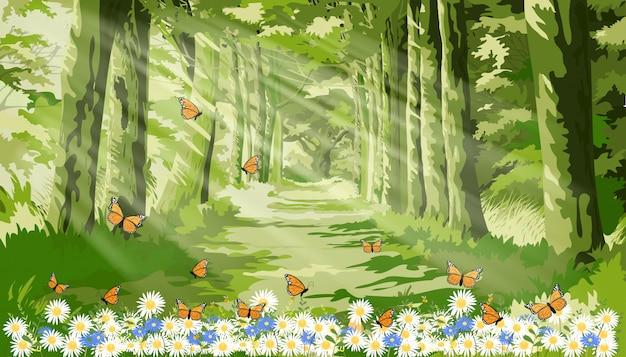 Paisagem da bela ilustração da natureza com a luz do sol brilhando na folhagem da floresta de manhã, desenhos animados de fantasia da floresta verde com borboleta e abelha voando sobre o campo de margarida Vetor Premium