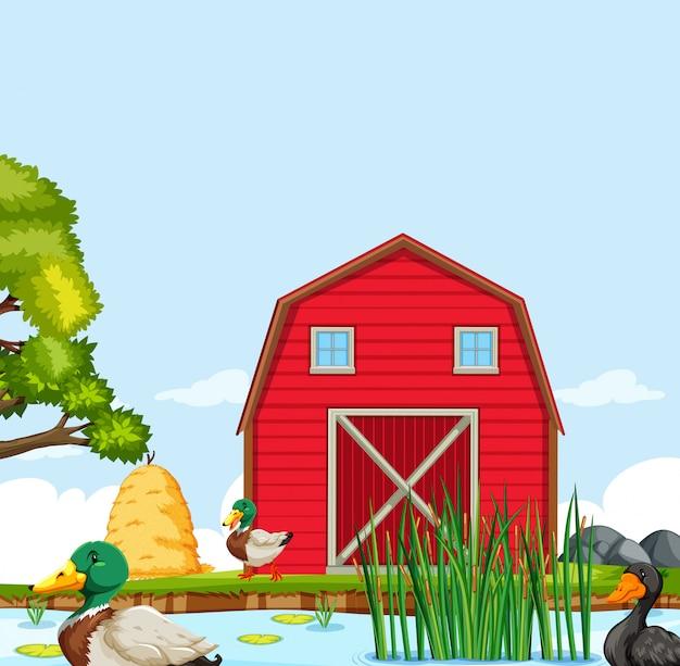Paisagem de casa de fazenda rural Vetor Premium