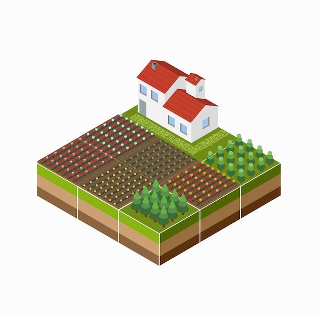 Paisagem isométrica do campo com a fazenda, a cultura, as camas. Vetor Premium