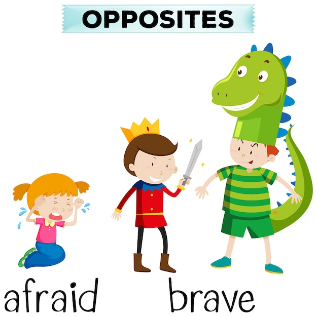 Palavras opostas por medo e coragem Vetor grátis