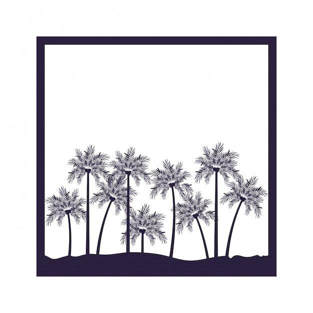 Palmeira com coco em fundo branco Vetor Premium