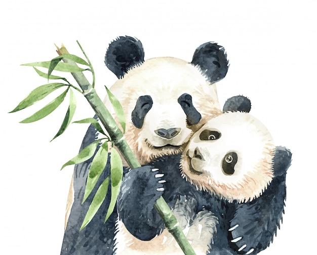 Panda de aquarela e panda bebê com bambu Vetor Premium