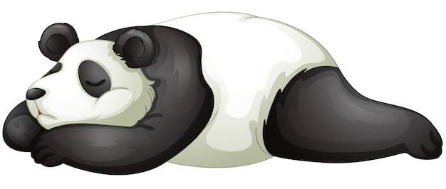 Panda Vetor grátis