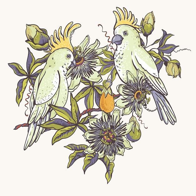 Papagaio branco vintage, coleção natural floral. Vetor Premium