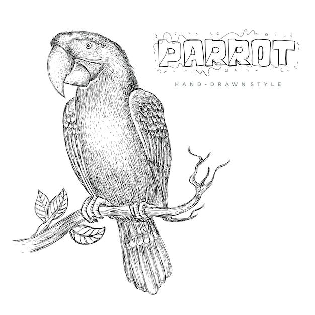 Papagaio-vetor empoleirado no tronco de uma árvore, ilustração de um animal desenhado à mão Vetor Premium