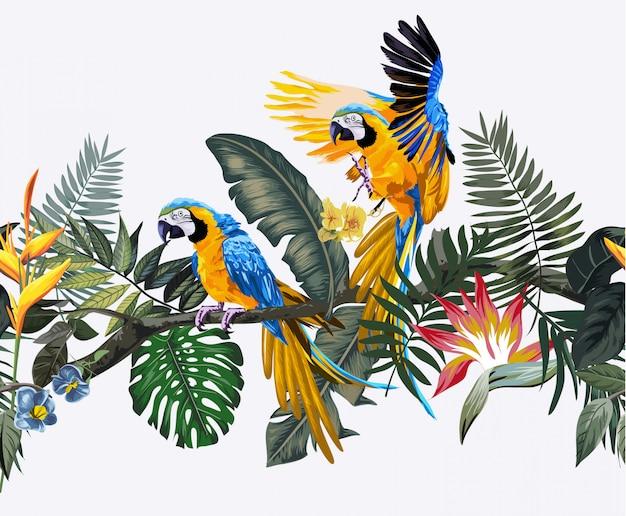 Papagaios selvagens selvagens e arara Vetor Premium