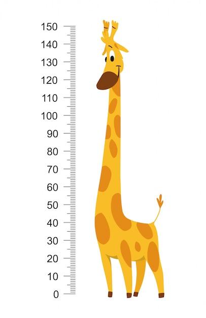 Parede de medidor de girafa ou ilustração em vetor altura gráfico Vetor Premium