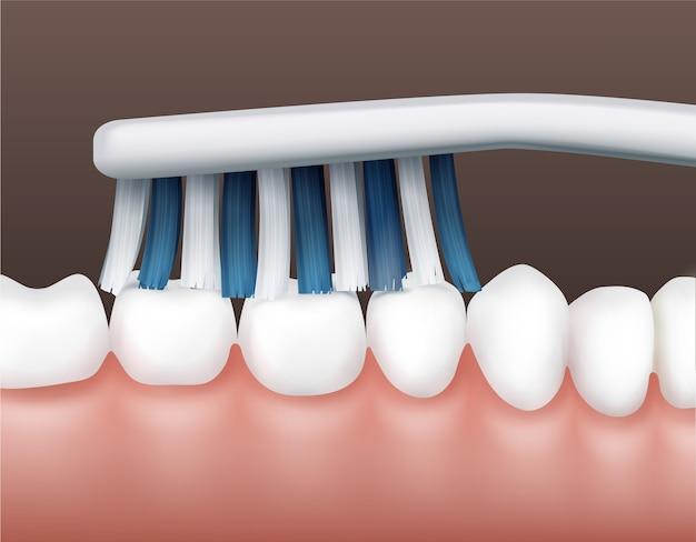 Parte vetorial da cavidade humana com dentes limpos e brancos e vista lateral de escova de dentes listrada Vetor Premium