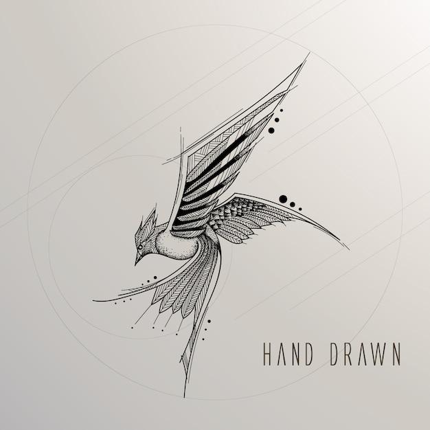 Pássaro desenhado mão Vetor grátis