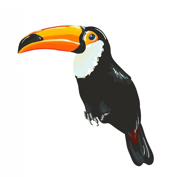 Pássaro tucano. vetor Vetor Premium