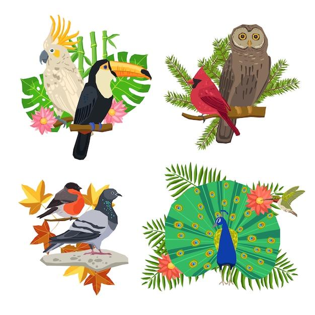 Pássaros e flores conjunto Vetor grátis