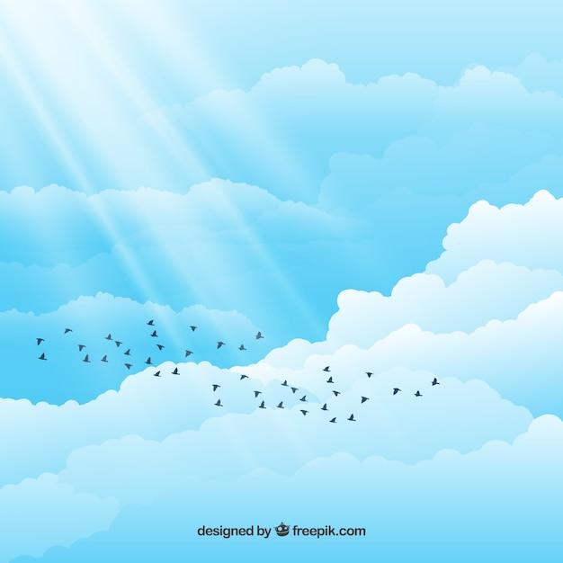 Pássaros no céu nublado Vetor grátis