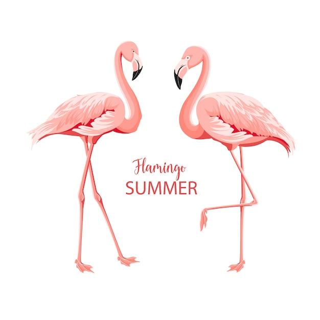 Pássaros rosa tropicais. Vetor Premium