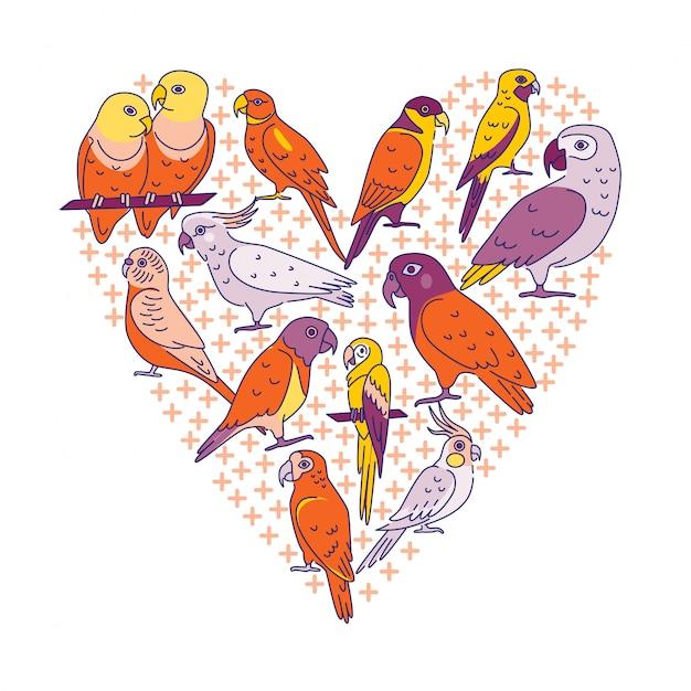 Pássaros tropicais em estilo de linha colorida em um coração Vetor Premium