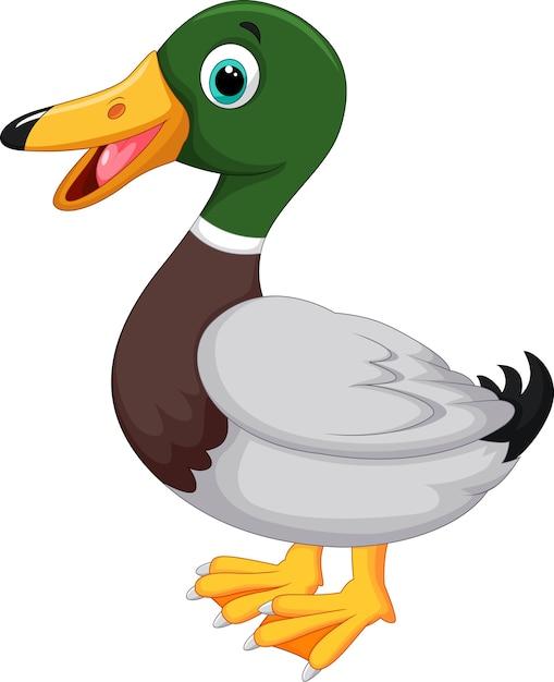 Pato bonito dos desenhos animados Vetor Premium