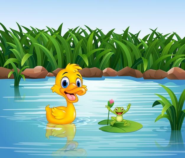 Pato engraçado dos desenhos animados com sapo Vetor Premium