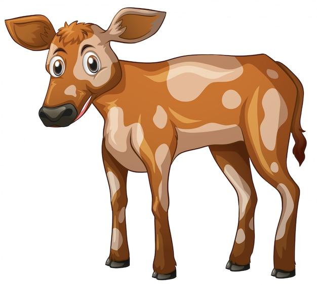 Pé de vaca Vetor grátis